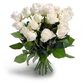 Wonderschone witte rozen