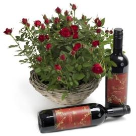 Miniatuur rozen cadeauset