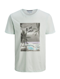 Jack & Jones T-shirt Pale Blue