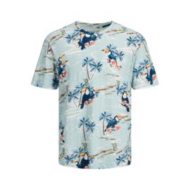 Jack & Jones T-shirt Florall Ether