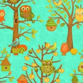 Owl and Bird Scenic