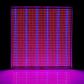 *Tijdelijk uitverkocht* Kweeklamp LED 120 Watt Groeilamp Bloeilamp Paneel Groei en Bloei