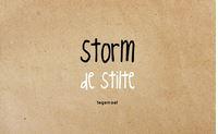 Enkele kaart Storm de stilte...