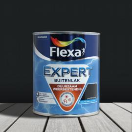 Flexa Expert Buitenlak Halfglans Grachtengroen 750 ml