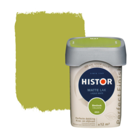 Histor Perfect Finish Matte Lak Bieslook 6923 750 ml