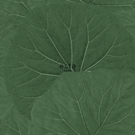 Esta home Jungle Fever 138996