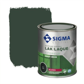 Sigma Lak Exterieur Hout Hoogglans RAL 6009  750 ml