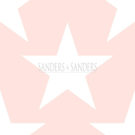 Sanders & Sanders Trends & More Behang nr. 935259