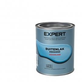 Expert Buitenlak Dekkend Hoogglans Gelders Blauw 750 ml