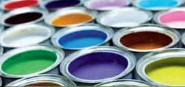 Lakverf Carnaval Alkyd - Op Kleur Gemengd - 1 liter