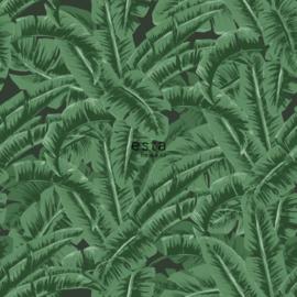 Esta home Jungle Fever 138985