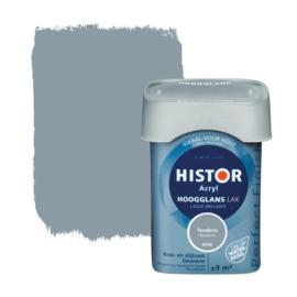 Histor Perfect Finish Lak Acryl Tendens 6906 Hoogglans 750 ml