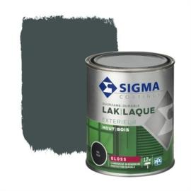Sigma Lak Exterieur Hout Hoogglans RAL  7016 750 ml