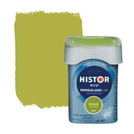 Histor Perfect Finish Lak Acryl Bieslook 6923 Hoogglans 750 ml