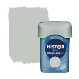 Histor Acryl Hoogglans Lak Cyber 6927 750 ml