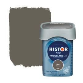 Histor Perfect Finish Lak Acryl Mus 6947 Hoogglans 750 ml