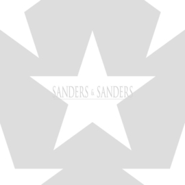 Sanders & Sanders Trends & More Behang nr. 935257