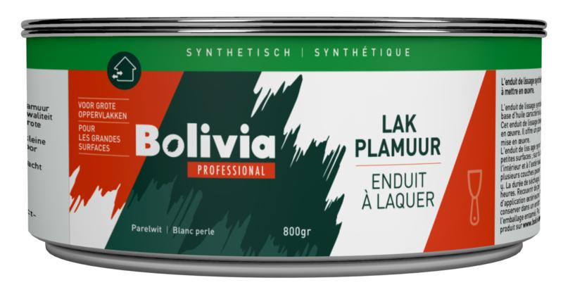 Bolivia Synthetische Lakplamuur 800 gram