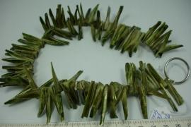 [5570 ] Trocca schelp Groen, Sticks, 35 cm.