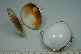 *[5578 ] Schelp doosje Wit glad +/- 56 mm.  met Zilver kleur rand