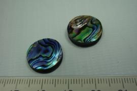[ 0728 ] Paua schelp kraal, +/- 16 x +/- 4.5 mm. per stuk