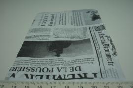 [ 8265 ] Papieren zakjes 10 x 15 cm. Krant, 50 stuks