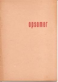 Catalogus Stedelijk Museum 054: Opsomer.
