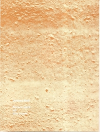 Catalogus Stedelijk Museum 672: Johnny Rolf (keramiek)