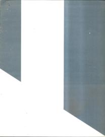 Buren, Daniel: Diagonale for two Floors