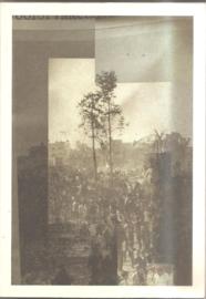 Johannesma, Rob: In Dark Trees