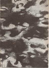 Catalogus Stedelijk Museum 206: Jonge Duitse kunstenaars.