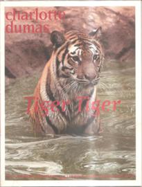 Dumas, Charlotte: Tiger Tiger / Reverie