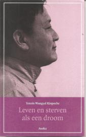 Rinpoche, T.W.: Leven en sterven als een droom