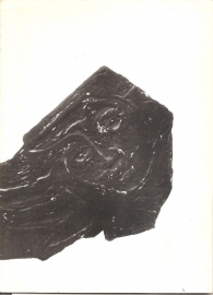 Catalogus Stedelijk Museum 173: Livinus.