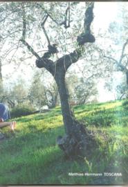 Herrmann, Matthias: Toscana