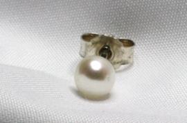 Petites Perles Blanches