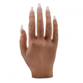 De perfecte hand model Hele hand  met de getinte huid.