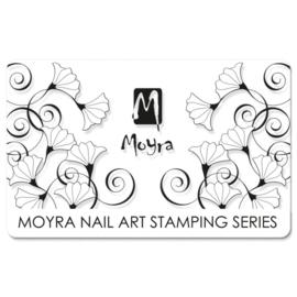 Moyra Scraper no 11