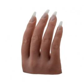 De perfecte hand model half hand getinte huid