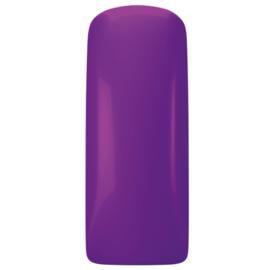 Magnetic Gelpolish  Lady Violet   103452