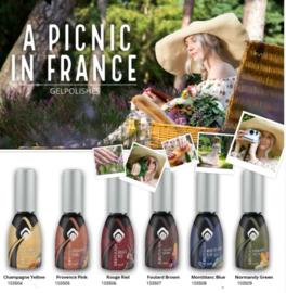 Magnetic Gelpolish A Picnic in France set van 6 kleuren.
