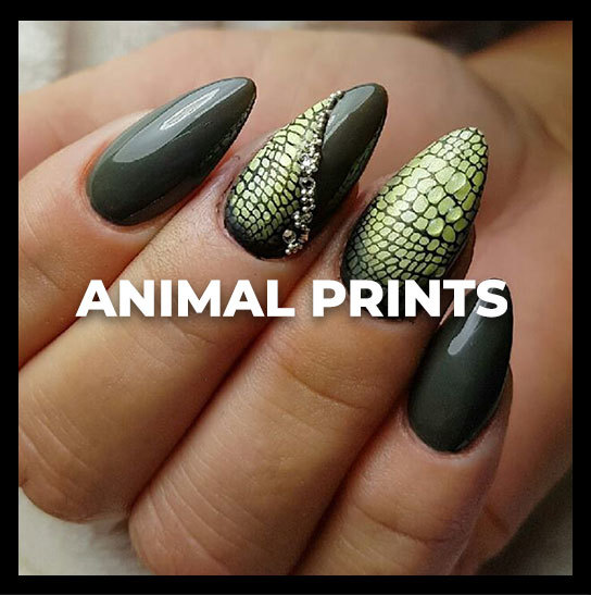 academy-animalprints-thumbnail.jpg