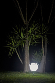 Rose Outdoor Lamp