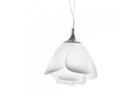 Rose Pendant Lamp in White