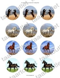 Cupcake Paarden 1