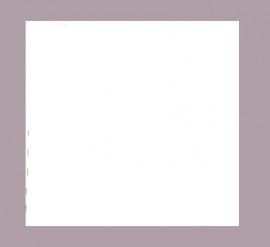 / Vetvrij taart karton 4-kant 25 X 25cm (5 stuks)