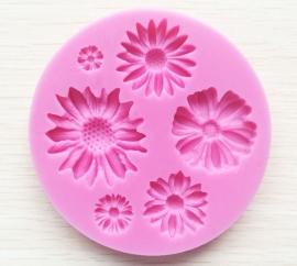 CV 13-bloemen mold