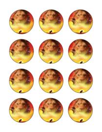 Lion King cupcake 3