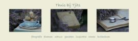 http://thuisbijtjits.blogspot.com/