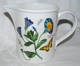 Kan Trailing Bindweed & Daisy (11 cm.) - Portmeirion Botanic Garden